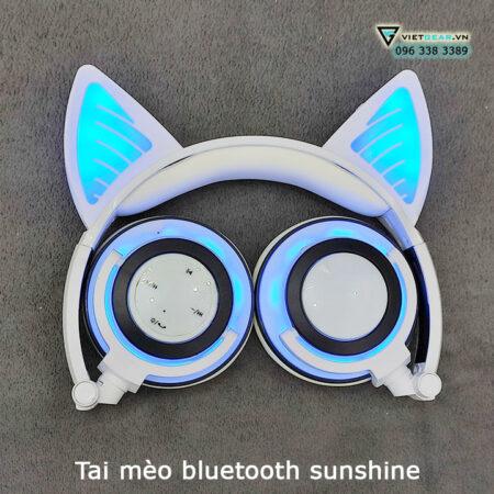 tai mèo bluetooth